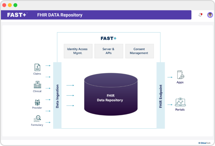FHIR Data Repository