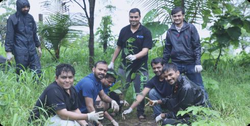 people planting plants