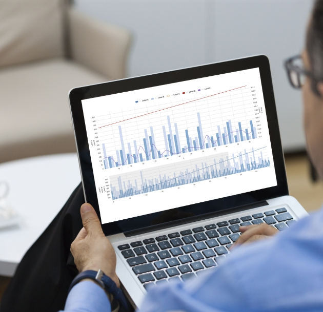 person looking at graphs on laptop